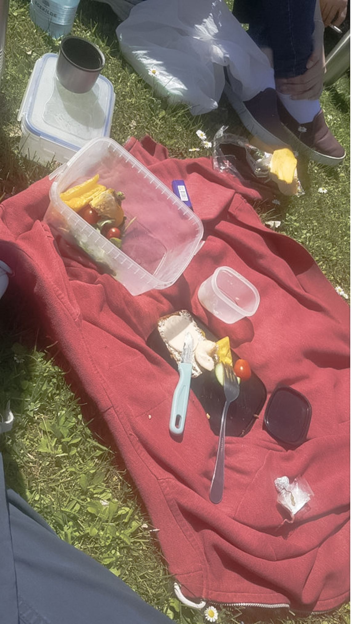 A red blanket on grass with tupperware with food on it.