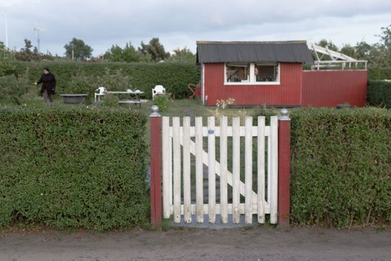 A red garden house behind a hedge and a white fence.